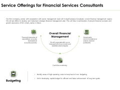 Service Offerings For Financial Services Consultants Ppt PowerPoint Presentation Infographic Template Background