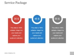 Service Package Template 1 Ppt PowerPoint Presentation Guide