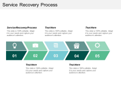 Service Recovery Process Ppt PowerPoint Presentation Summary Sample Cpb
