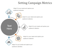 Setting Campaign Metrics Ppt PowerPoint Presentation Summary