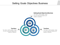 Setting Goals Objectives Business Ppt PowerPoint Presentation Portfolio Example File Cpb