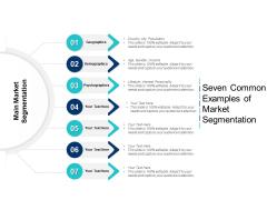 Seven Common Examples Of Market Segmentation Ppt PowerPoint Presentation Icon Mockup PDF