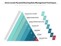 Seven Levels Pyramid Showing Data Management Techniques Ppt PowerPoint Presentation File Guide PDF