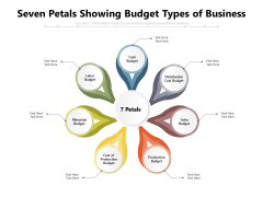 Seven Petals Showing Budget Types Of Business Ppt PowerPoint Presentation Gallery Designs PDF