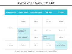 Shared Vision Matrix With Erp Ppt PowerPoint Presentation Infographics Background Images
