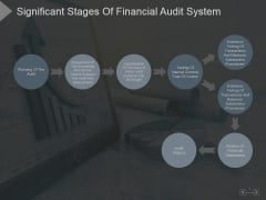 Significant Stages Of Financial Audit System Ppt PowerPoint Presentation Backgrounds