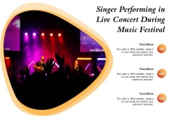 Singer Performing In Live Concert During Music Festival Ppt PowerPoint Presentation Infographics Maker PDF