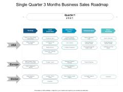 Single Quarter 3 Months Business Sales Roadmap Guidelines