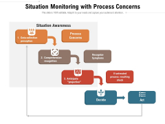 Situation Monitoring With Process Concerns Ppt PowerPoint Presentation Icon Slides PDF