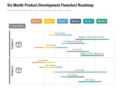 Six Month Product Development Flowchart Roadmap Professional
