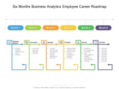Six Months Business Analytics Employee Career Roadmap Slides