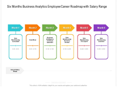 Six Months Business Analytics Employee Career Roadmap With Salary Range Pictures