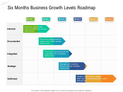 Six Months Business Growth Levels Roadmap Sample