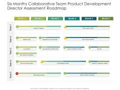Six Months Collaborative Team Product Development Director Assessment Roadmap Topics