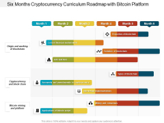 Six Months Cryptocurrency Curriculum Roadmap With Bitcoin Platform Clipart