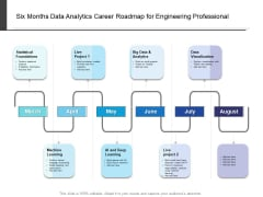 Six Months Data Analytics Career Roadmap For Engineering Professional Mockup