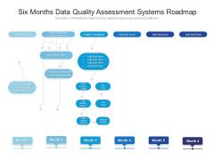 Six Months Data Quality Assessment Systems Roadmap Portrait