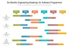 Six Months Engineering Roadmap For Software Programmer Infographics