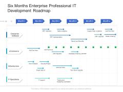 Six Months Enterprise Professional IT Development Roadmap Guidelines