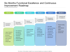 Six Months Functional Excellence And Continuous Improvement Roadmap Summary