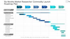 Six Months Market Researcher Commodity Launch Roadmap Plan Mockup
