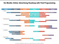 Six Months Online Advertising Roadmap With Paid Programming Guidelines