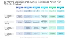 Six Months Organizational Business Intelligence Action Plan Maturity Roadmap Summary