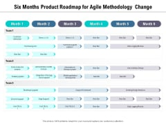 Six Months Product Roadmap For Agile Methodology Change Sample