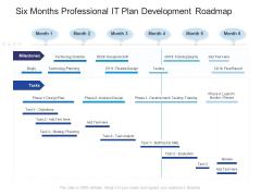 Six Months Professional IT Plan Development Roadmap Topics