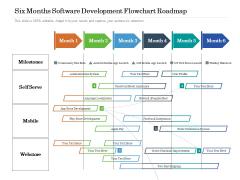 Six Months Software Development Flowchart Roadmap Summary