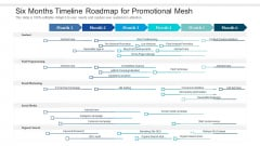 Six Months Timeline Roadmap For Promotional Mesh Demonstration