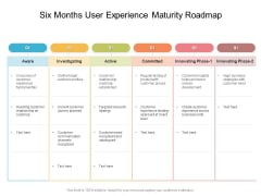 Six Months User Experience Maturity Roadmap Sample