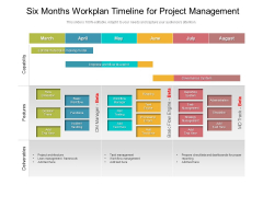 Six Months Workplan Timeline For Project Management Professional