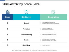 Skill Matrix By Score Level Ppt PowerPoint Presentation Ideas Background Designs