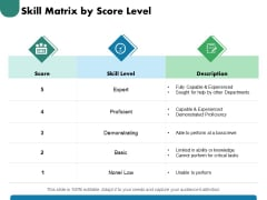 Skill Matrix By Score Level Ppt PowerPoint Presentation Model Portfolio