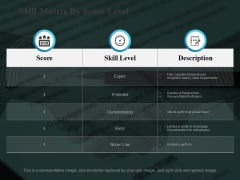 Skill Matrix By Score Level Ppt PowerPoint Presentation Themes