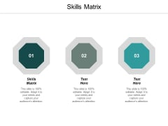 Skills Matrix Ppt PowerPoint Presentation Introduction Cpb