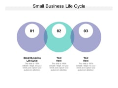 Small Business Life Cycle Ppt PowerPoint Presentation Summary Professional Cpb