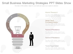Small Business Marketing Strategies Ppt Slides Show
