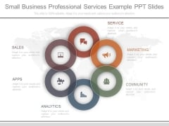 Small Business Professional Services Example Ppt Slides