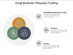 Small Business Requires Funding Ppt PowerPoint Presentation Portfolio Shapes Cpb