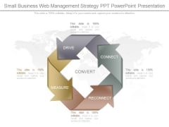 Small Business Web Management Strategy Ppt Powerpoint Presentation