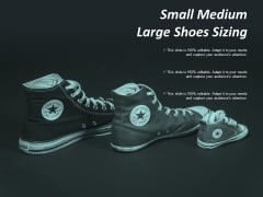 Small Medium Large Shoes Sizing Ppt Powerpoint Presentation Infographic Template Show