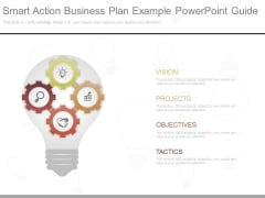 Smart Action Business Plan Example Powerpoint Guide