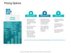 Smart Software Pricing Strategies Pricing Options Ppt Portfolio File Formats PDF