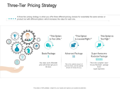 Smart Software Pricing Strategies Three Tier Pricing Strategy Ppt Model Inspiration PDF