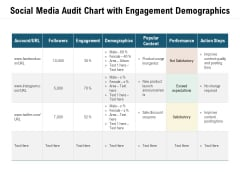 Social Media Audit Chart With Engagement Demographics Ppt PowerPoint Presentation File Skills PDF