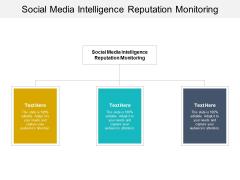 Social Media Intelligence Reputation Monitoring Ppt PowerPoint Presentation Slides Portrait Cpb Pdf