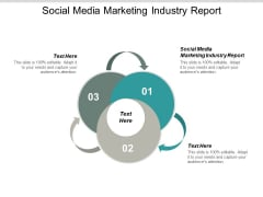Social Media Marketing Industry Report Ppt PowerPoint Presentation Professional Example Cpb