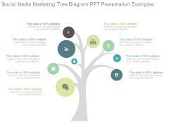 Social Media Marketing Tree Diagram Ppt Presentation Examples